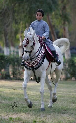 Chłopiec na koniu, fot. Joanna Jonientz
