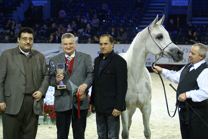 Emandoria with Director Jerzy Białobok, the handler Mariusz Liśkiewicz and the representants of Dubai Arabian Horse Stud and Athbah Stud (sponsors). By Krzysztof Dużyński