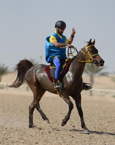 Eton po Gazal Al Shaqab w Bouthieb, Puchar Prezydenta Zjednoczonych Emiratów Arabskich 2013, fot. Melanie Cottle-Askew