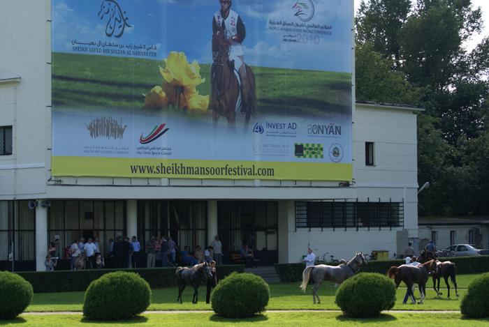 Służewiec Racetrack on Arabian Day, by Krzysztof Dużyński