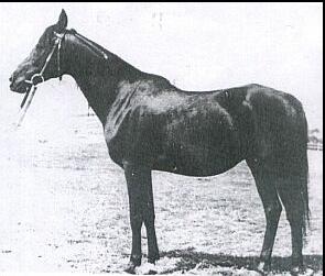 Ferha 1943 (Kuhailan Abu Urkub - Udżda), hod. Gumniska, fot. arch.