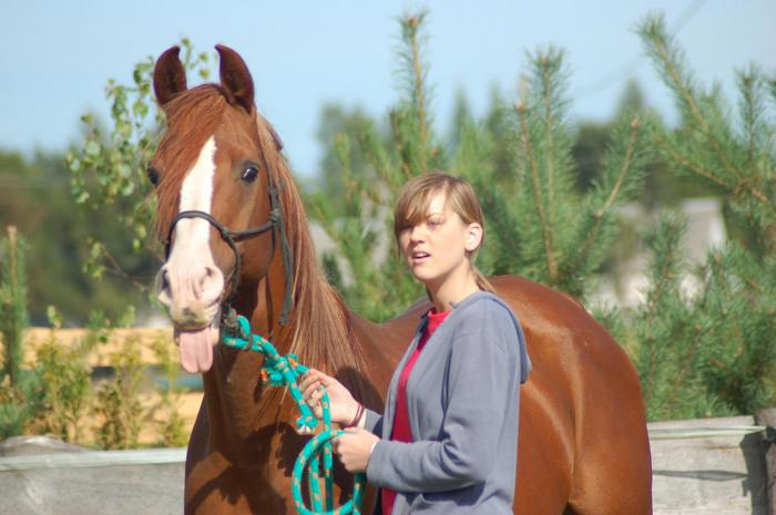 Przyjazne jeździectwo w Krainie Kuhailana