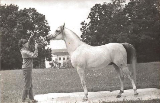 Ewa Szadyn z Gabarytem, Białka '87. Fot z archiwum Ewy Szadyn