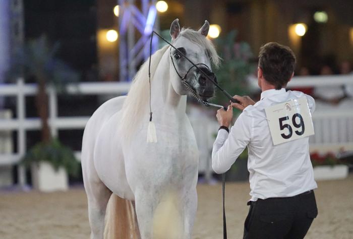 Julaibeeb Al Fahed z Geraldem Kurtzem, fot. Monika Luft