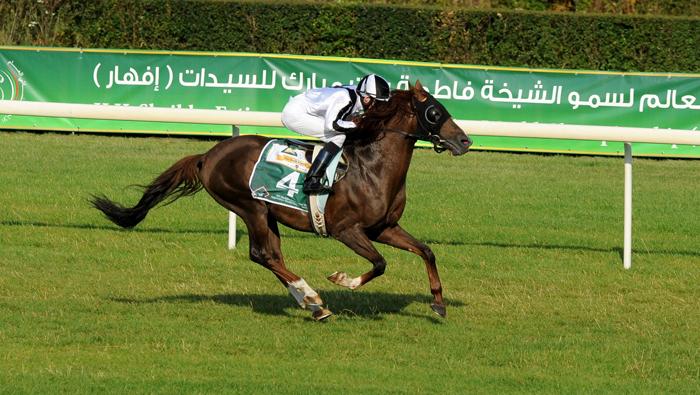 Kasir Al Khalediah, fot. Zuzanna Zajbt