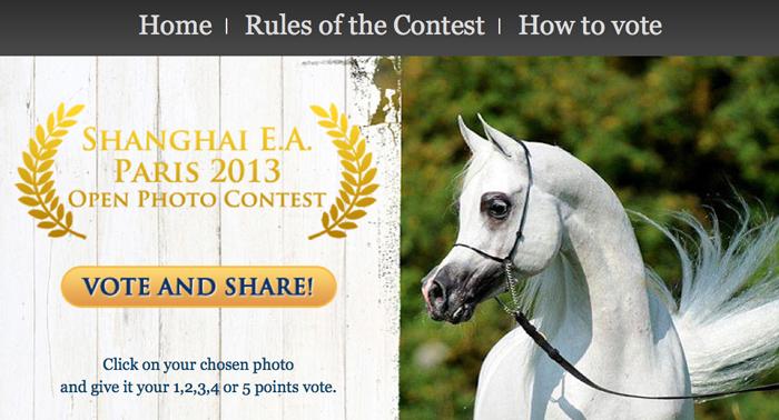 Shanghai E.A. Paris 2013 Open Photo Contest. Zagłosuj! Także z urządzeń mobilnych