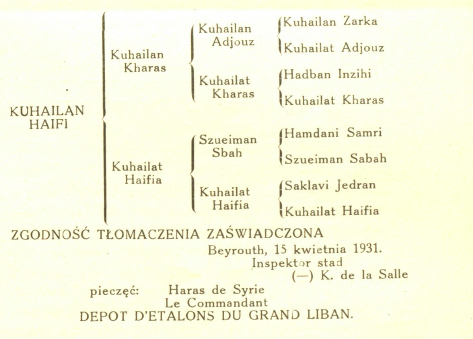 Kuhailan Haifi's pedigree. Jeździec i Hodowca magazine [Rider and Breeder], Under the tents of the Bedouins, 1931
