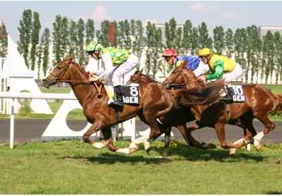 Francja – reorganizacja gonitw i ranking koni czystej krwi po sezonie 2008
