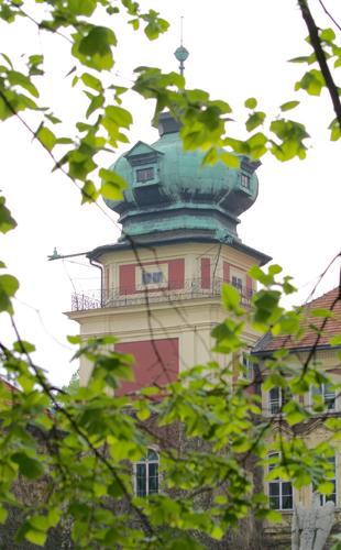 Łańcut, fot. Krzysztof Dużyński