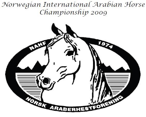 Międzynarodowy pokaz w Porsgrunn (Norwegia) w czerwcu