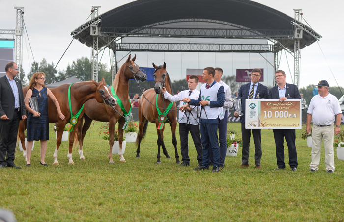 Three Michałów mares on the podium, by Ewa Imielska-Hebda