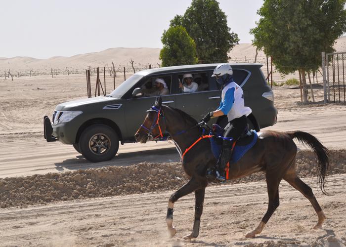 Polka rządzi na pustyni – Kamila Kart na czele rankingu jeźdźców Międzynarodowej Federacji Jeździeckiej