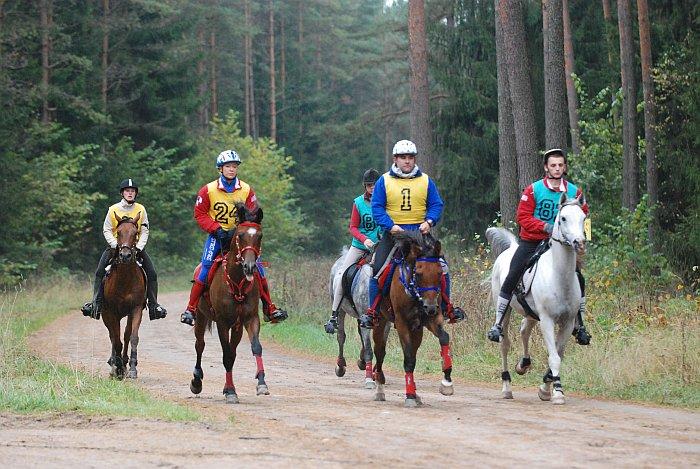 Zawodnicy na koniach arabskich, fot. Mateusz Jaworski
