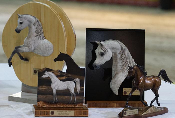 The trophies, by Krzysztof Dużyński