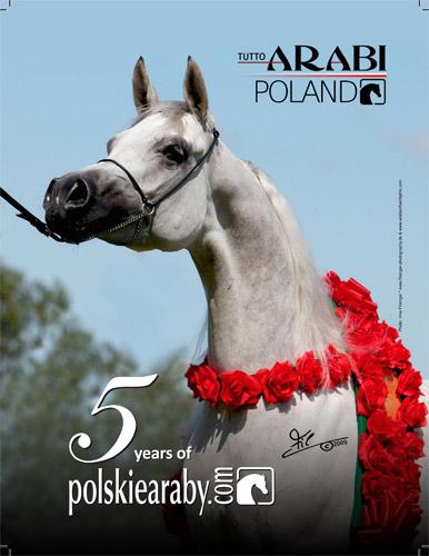 Jubileusz portalu – polskiearaby.com na papierze!