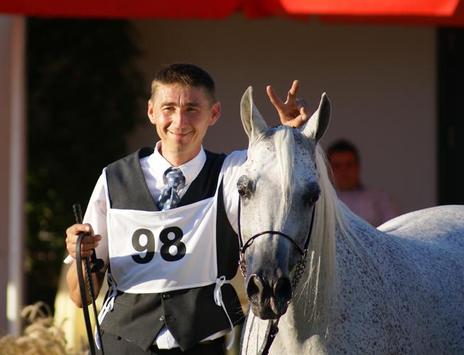 Senior Champion Mare Norma with handler Piotr Dwojak, by Krzysztof Dużyński