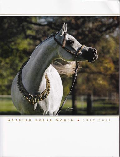 Arabian Horse World po polsku