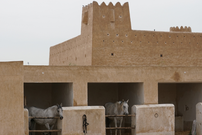 The Ottoman stable, the oldest at Al Shaqab, by Monika Luft