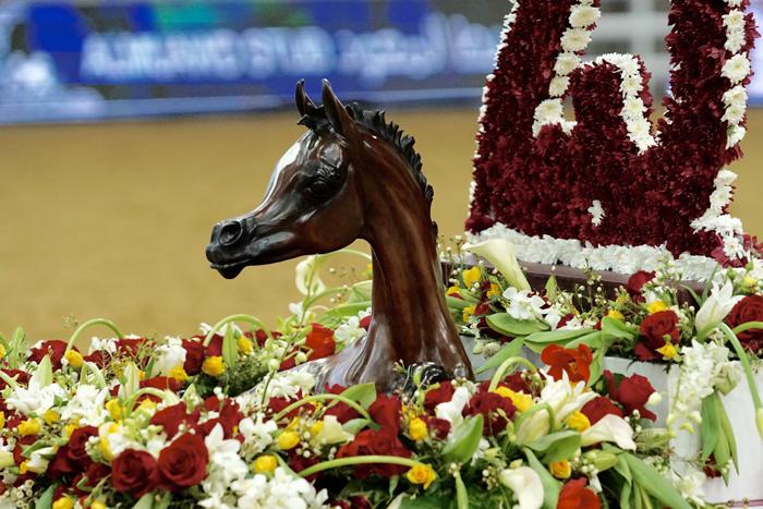 Katarski festiwal konia arabskiego (Doha, 9-15.03)