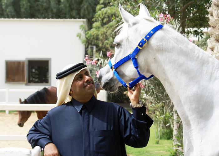 Gdy tylko pierwszy raz otworzyłem oczy, ujrzałem konie