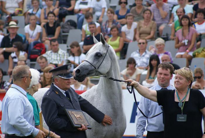 WAHO Trophy: Palmira with her breeders from Michałów Stud. By Krzysztof Dużyński