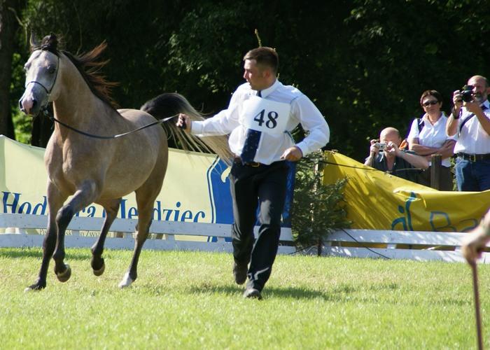 Panicz and his trainer Szymon Głowacki by M.Luft