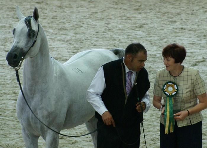 Pegasus z Anną Stefaniuk i Gerardem Paty, fot. Krzysztof Dużyński