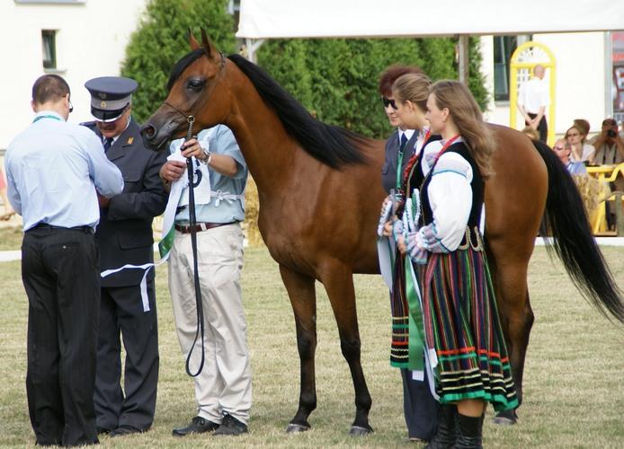 Dekoracja Pingi w Janowie 2008. Fot. Krzysztof Dużyński