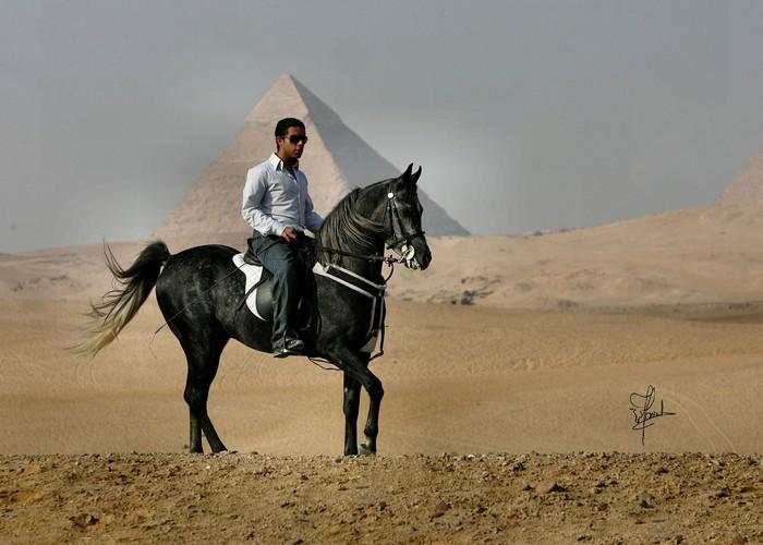 Pod piramidami, fot. Joanna Jonientz