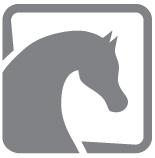 Śledź nowości na portalu polskiearaby.com!