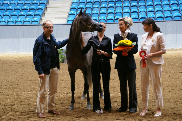 Dania: Psyche Victoria, Altis i Girlan-Bey na czele klas