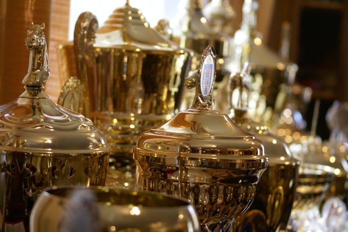 Michałów. The trophies, by Krzysztof Dużyński