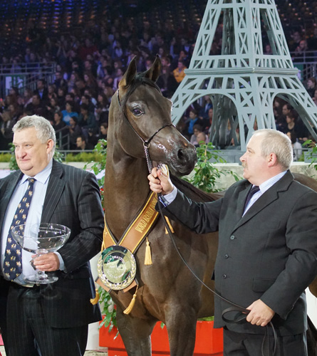 Złota medalistka Pustynia Kahila w Paryżu, z dyr. Jerzym Białobokiem (po lewej) i Mariuszem Liśkiewiczem (po prawej). Fot. Krzysztof Dużyński