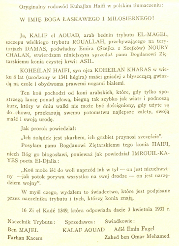 Kuhailan Haifi's pedigree translated into Polish and published in the Jeździec i Hodowca magazine [Rider and Breeder], Under the tents of the Bedouins, 1931