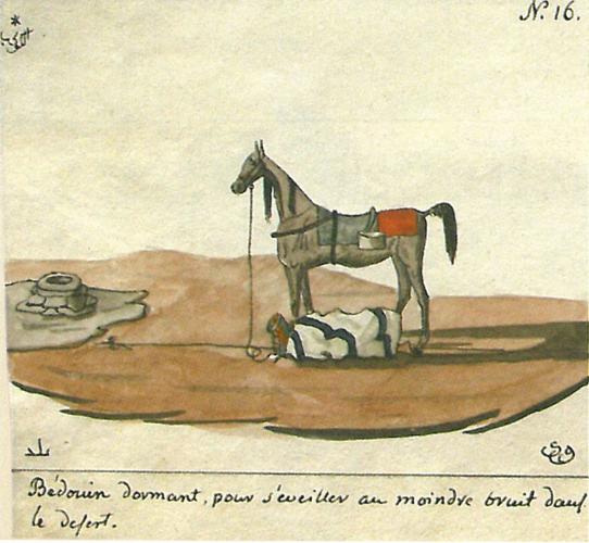 Bedouin dormant. One of the Wacław Rzewuski's drawings