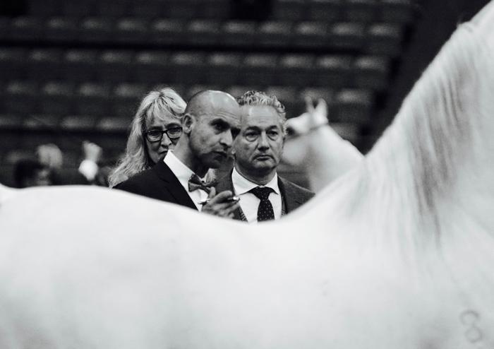 Sędziowie, fot. Monika Luft