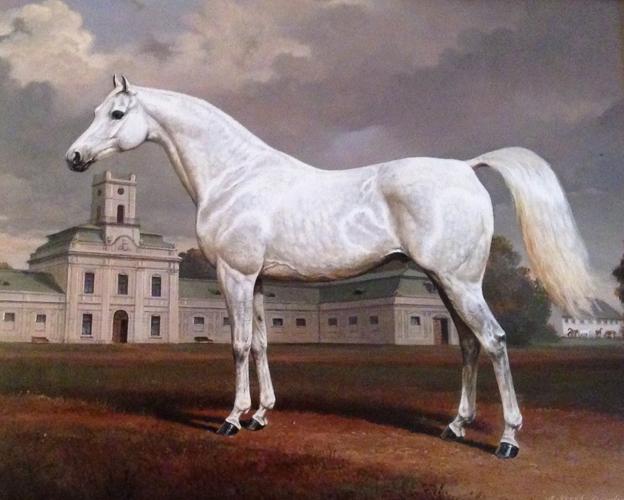 235 lat polskiej hodowli prywatnej koni czystej krwi. Czy pamięć udało się wymazać?