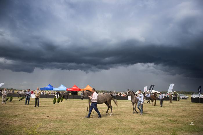 Sztormowa pogoda towarzyszyła pokazowi w sobotę, fot. Ewa Imielska-Hebda