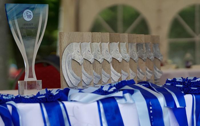 Białka trophies for Michałów Stud, by Krzysztof Dużyński