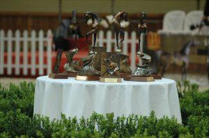 The trophies by Katarzyna Dolińska