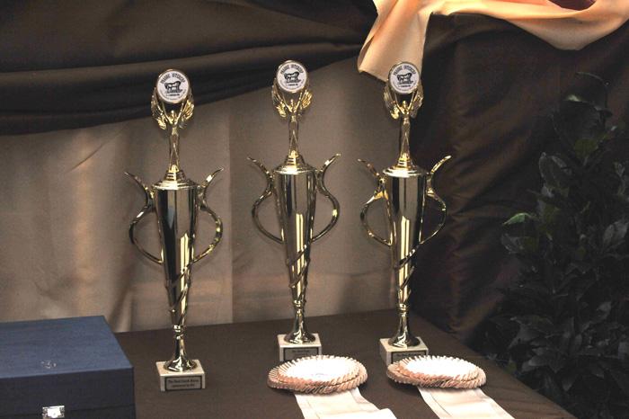 The trophies, by Urszula Sawicka