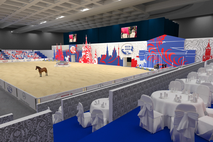 Visualization of the show arena