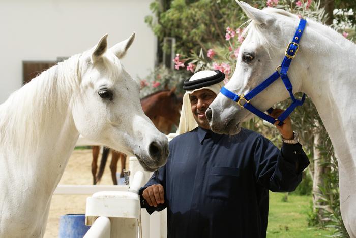Szejk Hamad Bin Ali Al Thani z klaczami w Al Rayyan Farm 2015. Fot. Monika Luft