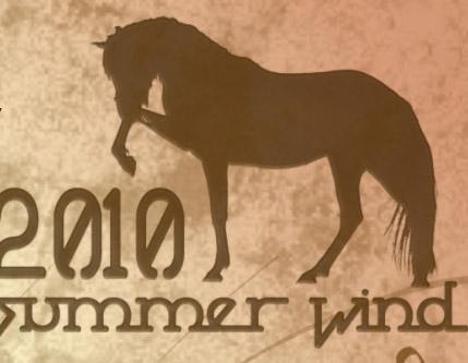 Dzień Konia Arabskiego, Dąbrowa, 12 czerwca