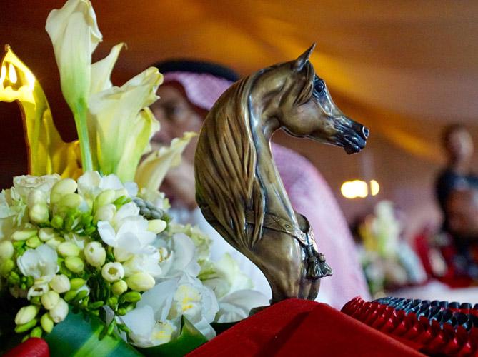 Asharqia Arabian Horse Festival (Dammam, Arabia Saudyjska)