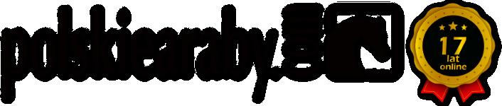 polskiearaby.com - logo 17 lat online