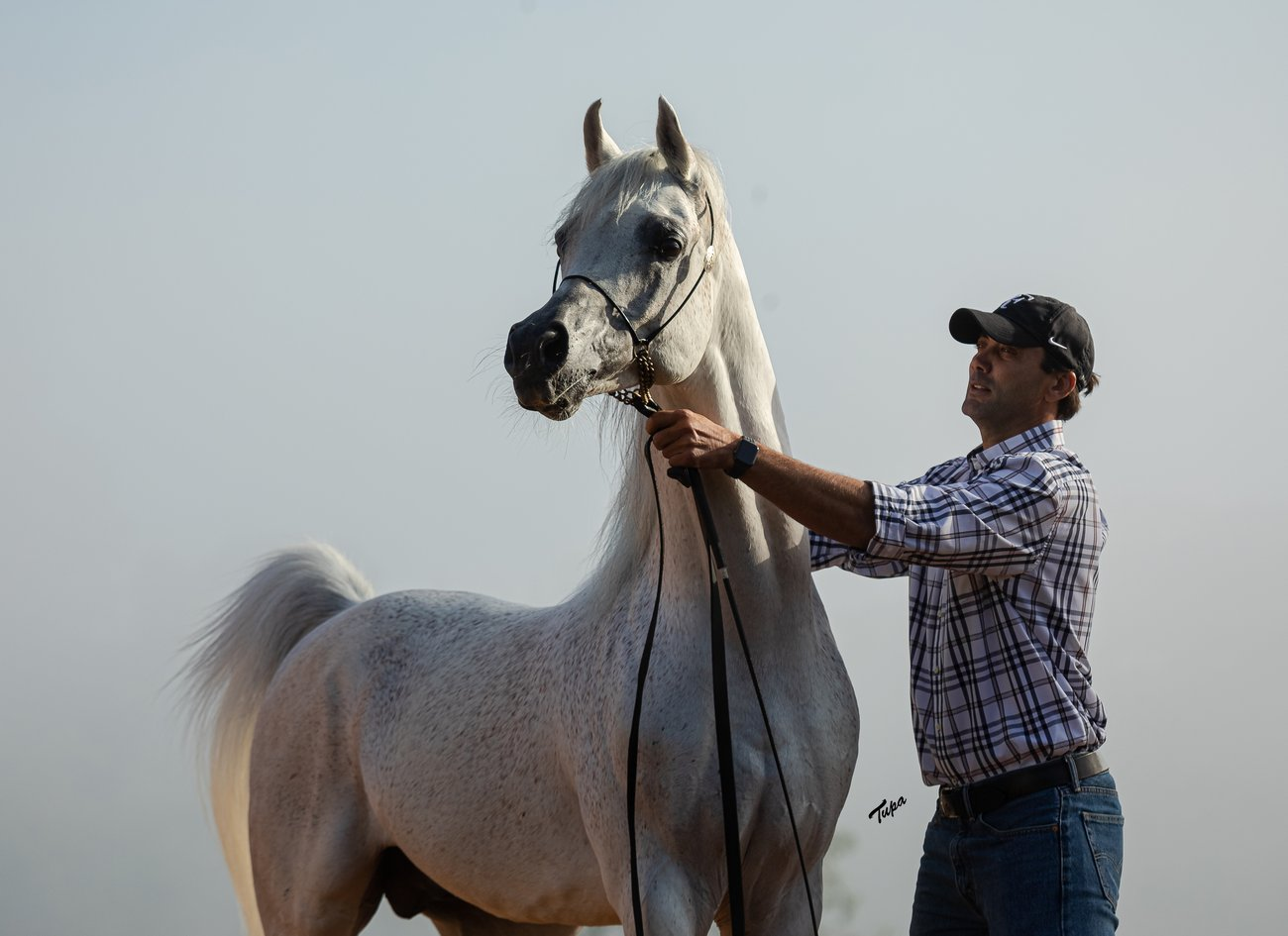 El Jahez WH with the trainer Dagmar Gordiano, by Tupa