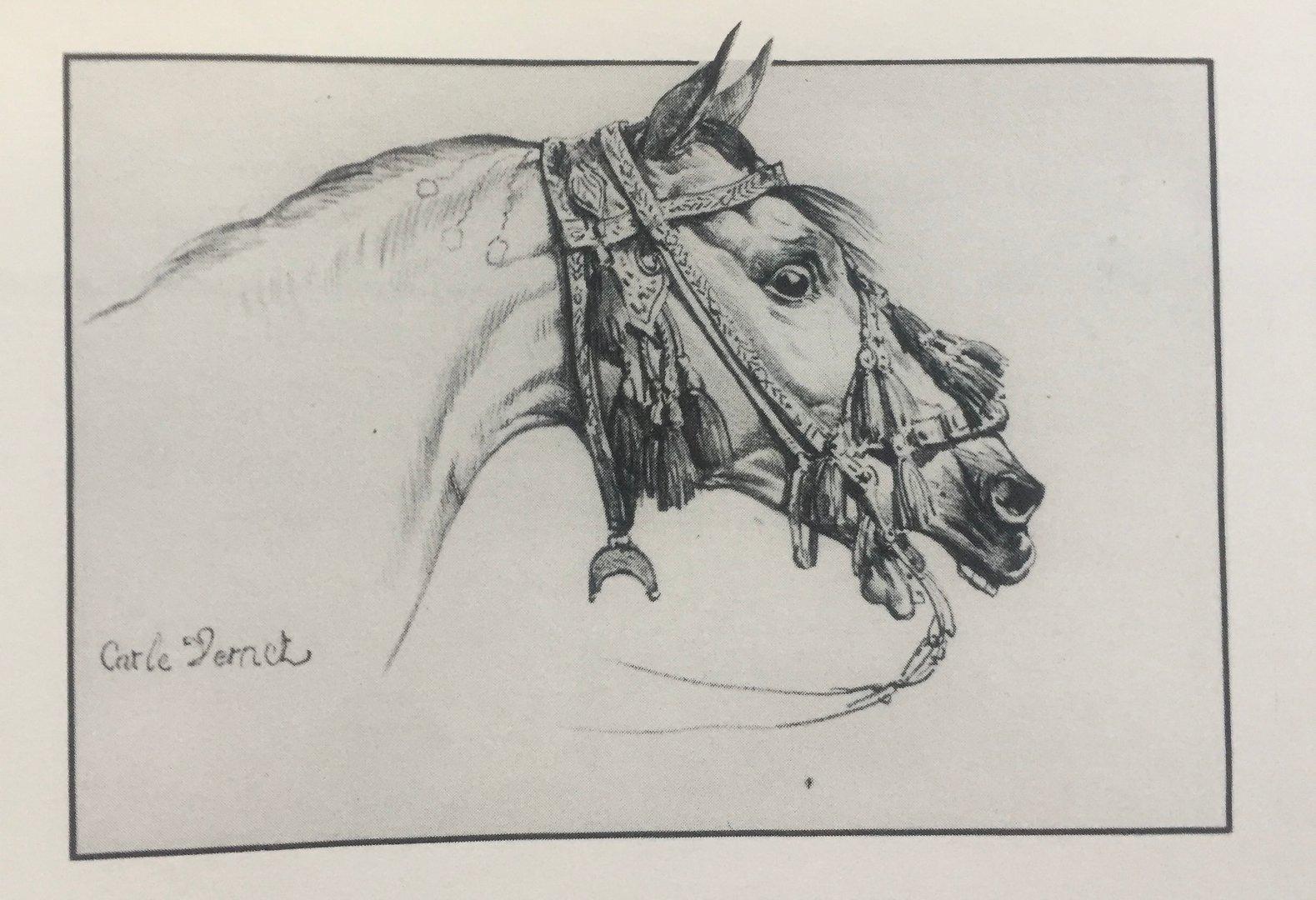 Głowa konia, Carle Vernet, ze zbiorów Biblioteki Narodowej w Warszawie, fot. archiwum