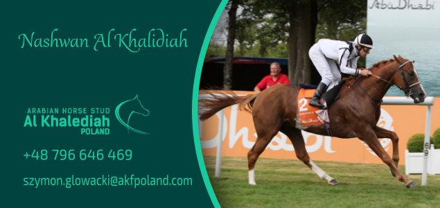 Nashwan Al Khalidiah