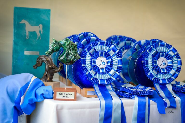 Prizes at this year Junior Spring Show in Białka, by Ewa Imielska-Hebda